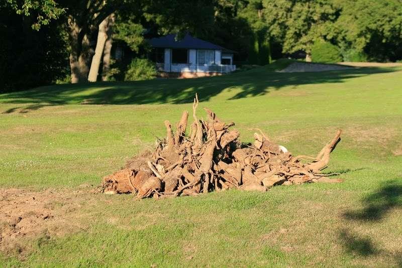 Coupe des arbres sur le parcours